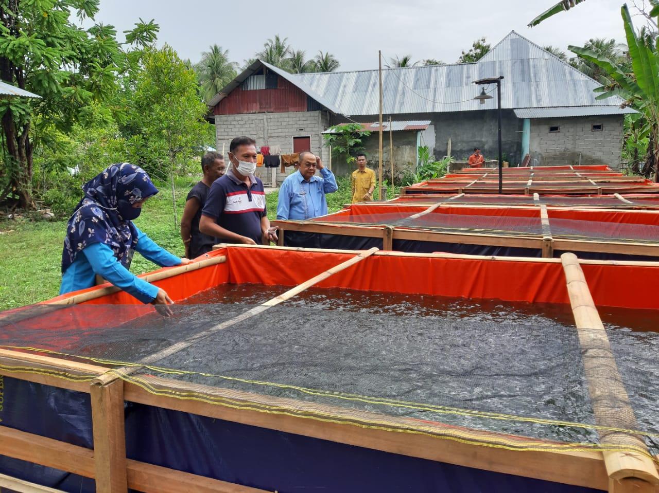 Satu Kelompok Budidaya Ikan di Sumalata Timur terima Bantuan Sarana Produksi